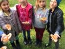 Erntezeit im Schulgarten