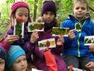 UG in Wald